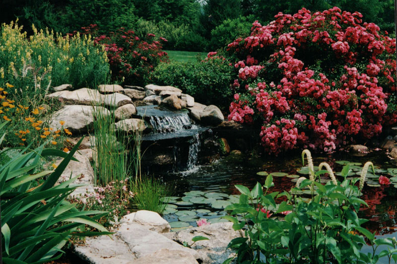Maher Greenwald Ponds Streams And Water Features