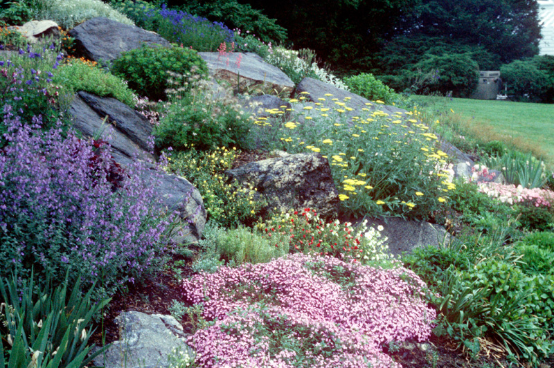 Maher Greenwald Slopes and Rock Gardens Gallery