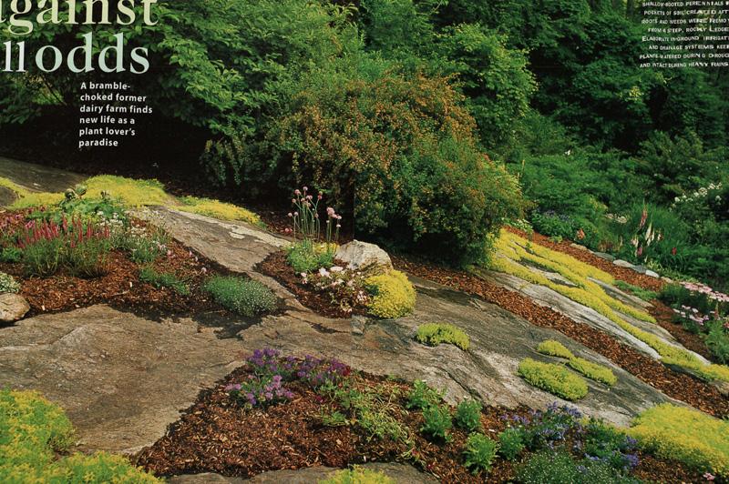 maher greenwald fine gardens slopes and rock gardens gallery. Black Bedroom Furniture Sets. Home Design Ideas