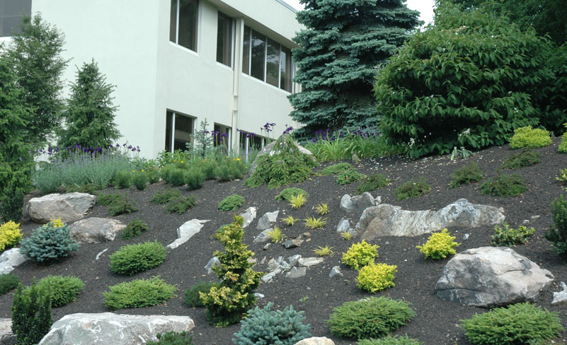 Side Of The House Landscaping With Rocks