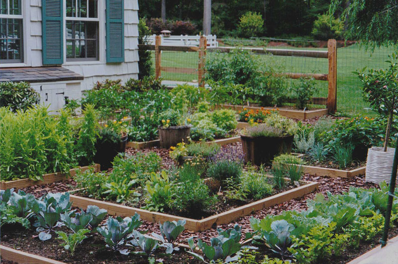 Cutting Garden Design Plans maher & greenwald :: vegetable/cutting/herb gardens gallery